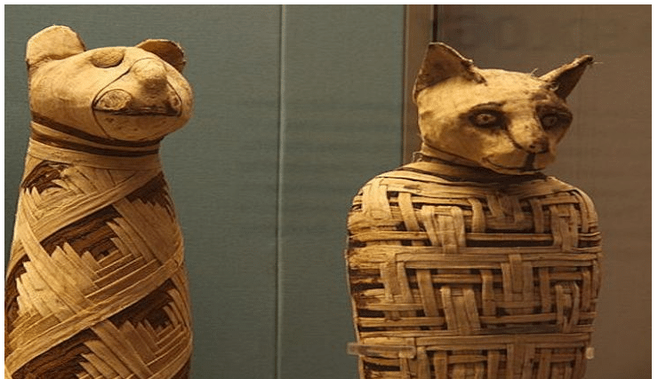 Sacred animals of Ancient Egypt