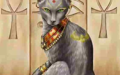 12 Amazing facts about cats in ancient Egypt
