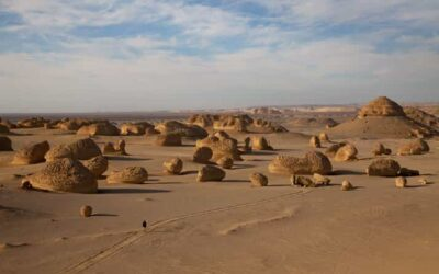 Wadi Al-Hitan (Valley of the Whales), the desert where the whales swam